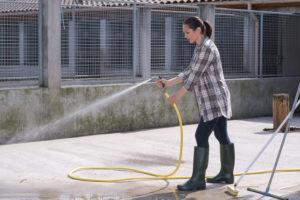 woman cleaning outdoor kennel area